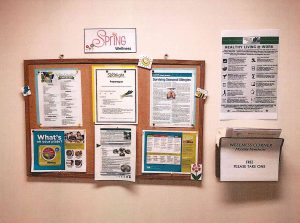 Spring Wellness Informational Bulletin Board